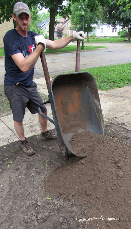 Dumping wheelbarrows of topsoil for new grass seed