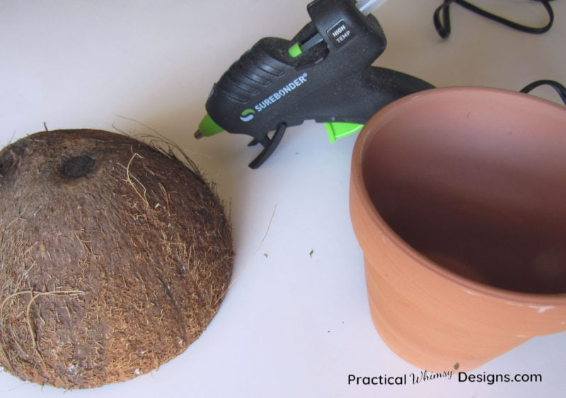 Supplies for making coconut mushroom craft