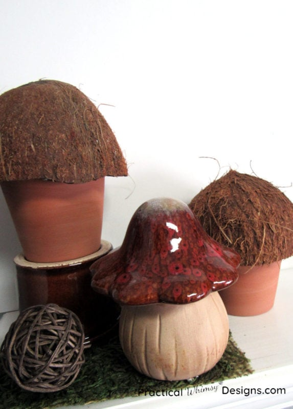 Brown mushroom decor on shelf