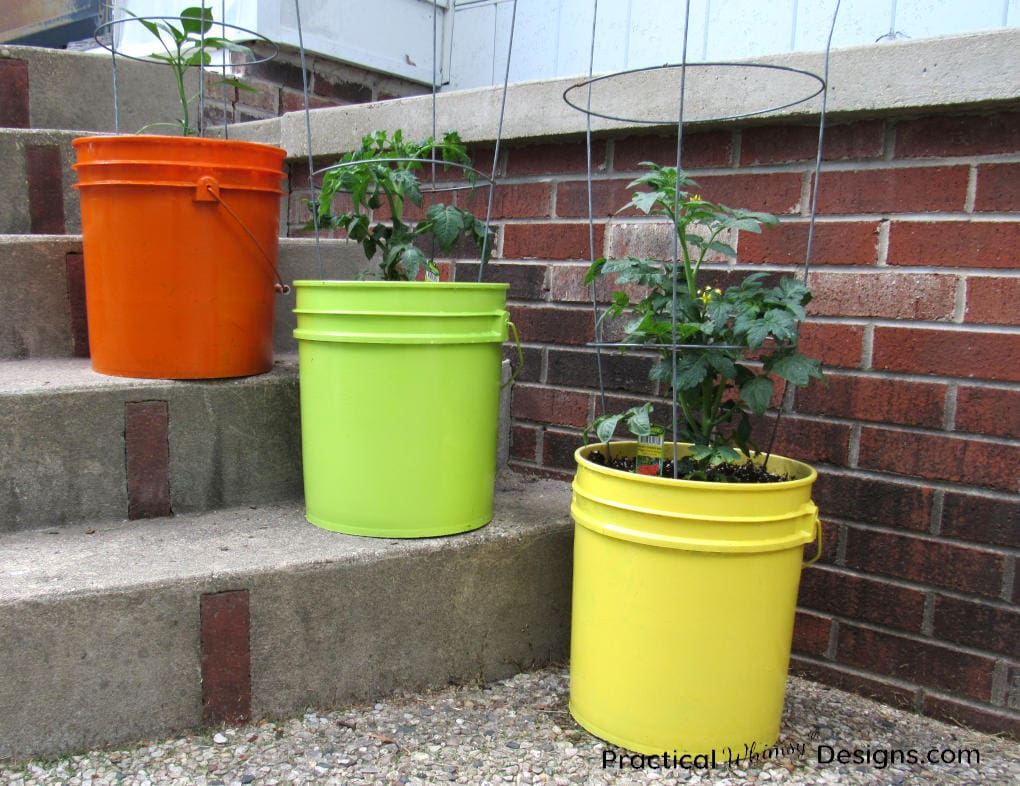 5 gallon bucket planters on stairs