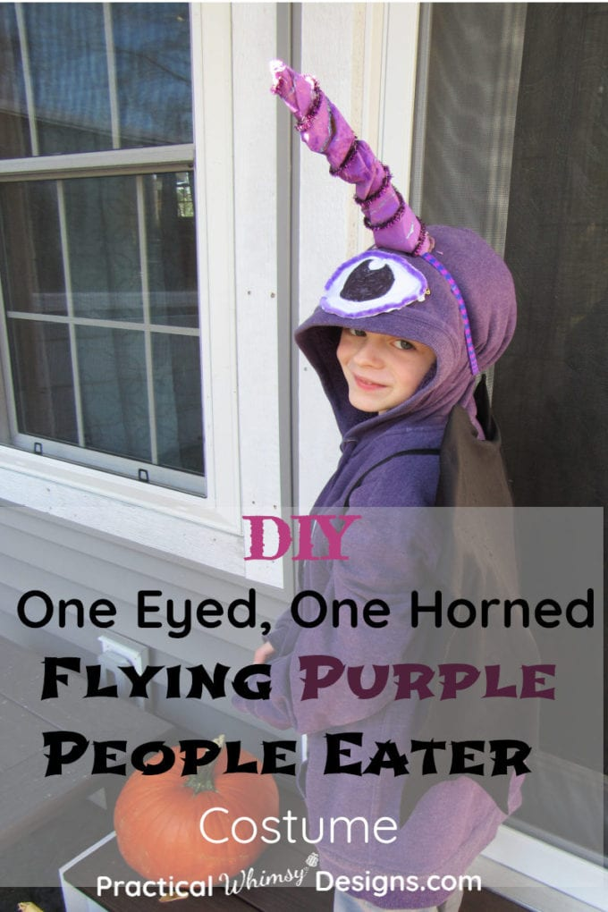 DIY One Eyed, One Horned Flying Purple People Eater Costume.