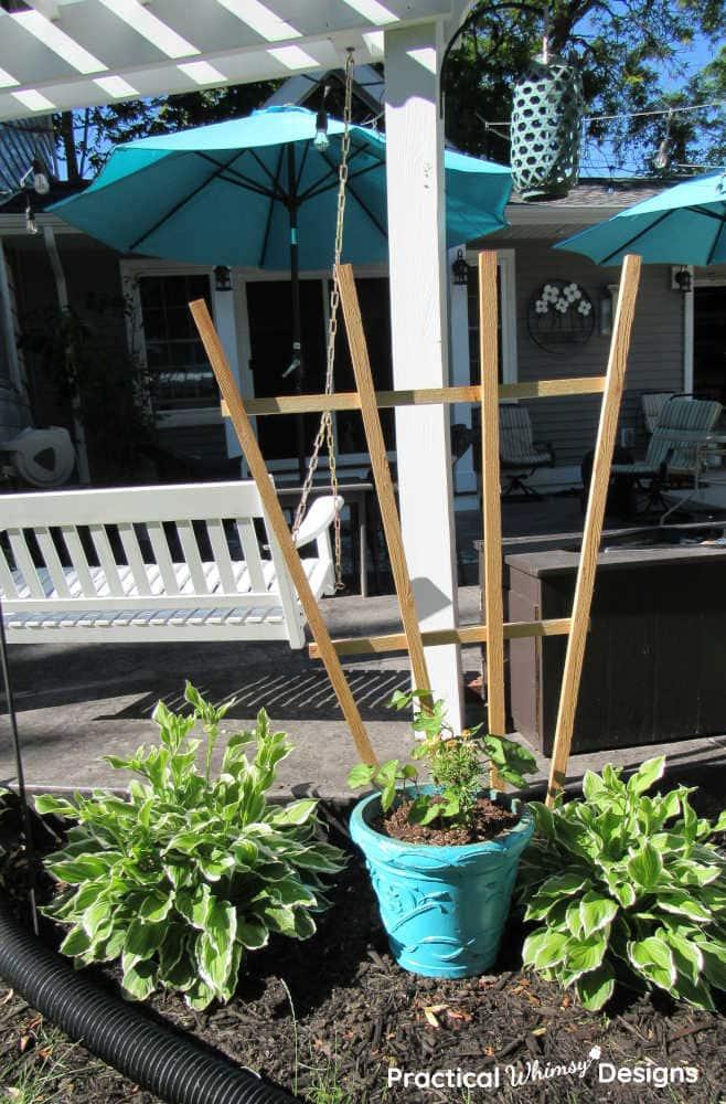 Trellis next to patio and plants.