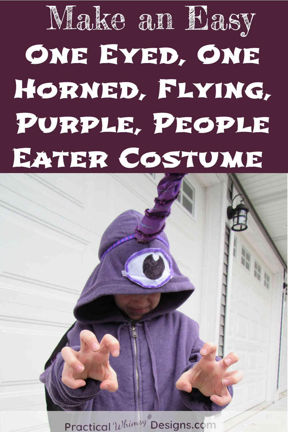 Little boy in DIY One Eyed, One Horned, Flying, Purple, People Eater Costume