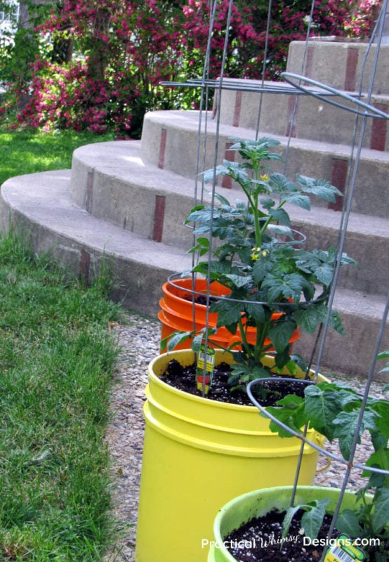Planters with stairs in background