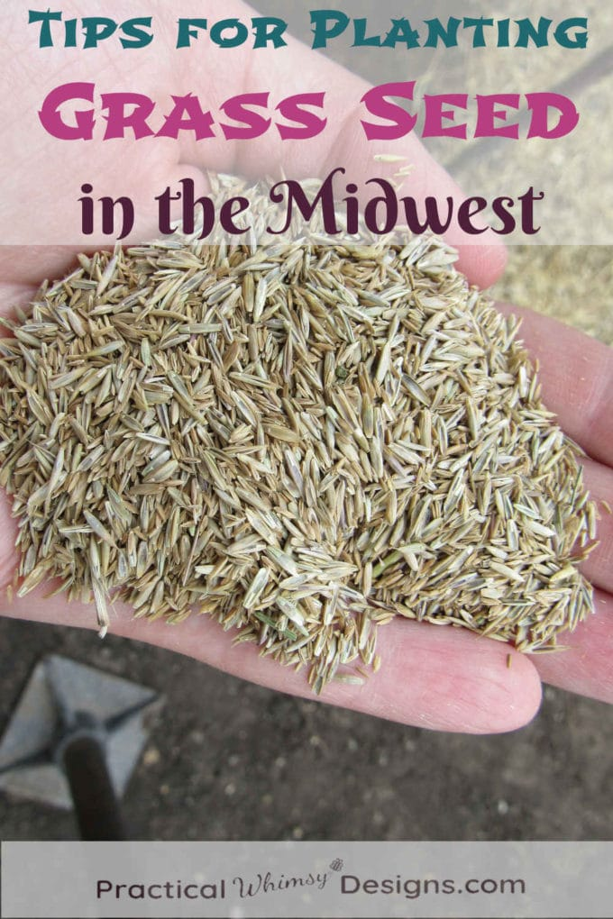 6 Tips for Planting Grass Seed in the Midwest