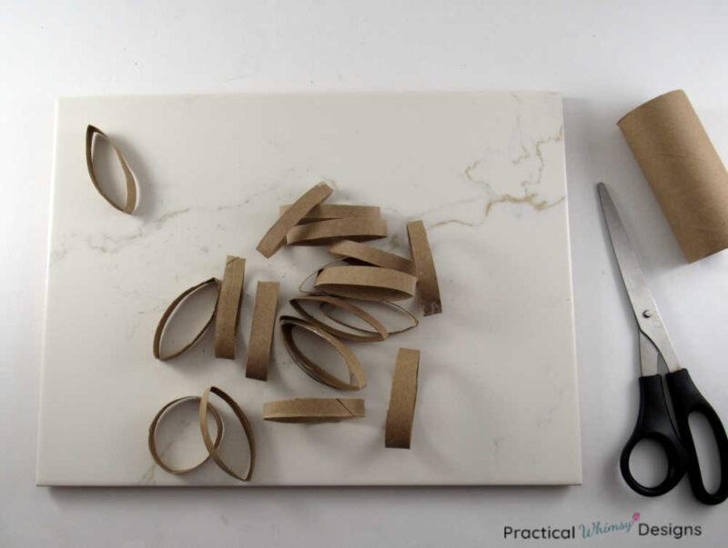 Toilet paper rolls cut in 1/4 inch segments