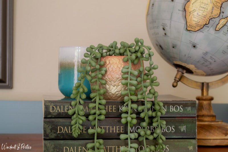 Painted vase with green plant next to globe
