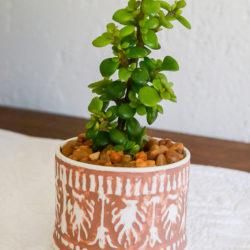 Boho terracotta planter