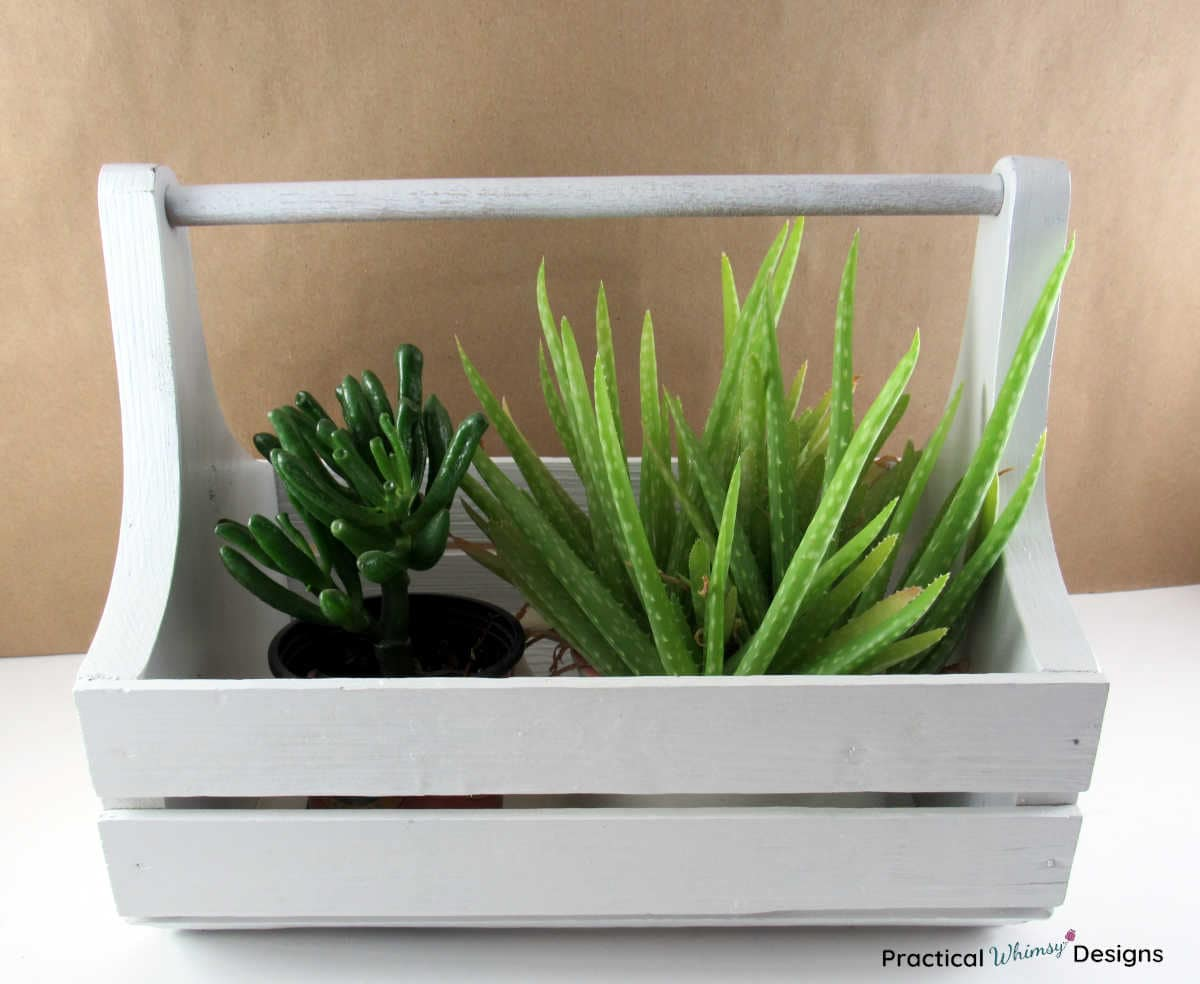 Wooden caddy with succulent plants inside